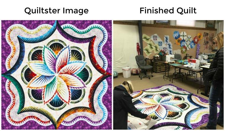 Hosta Queen Rainbow Wallflowers Compare